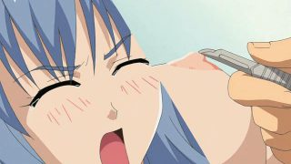 Gorgeous anime honey getting massive breasts teased and giving head